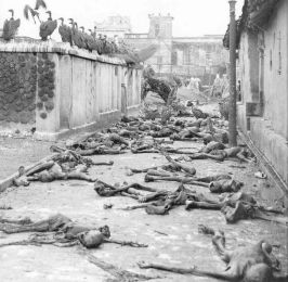 Vultures of India, People during Bengal famine, Winston Churchill