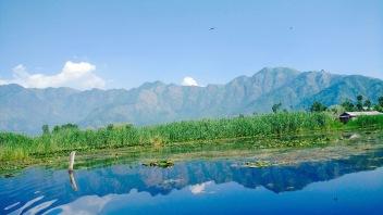 Road trip From Sringar to Leh Ladakh