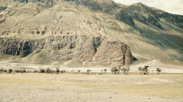 travel leh to nubra valley