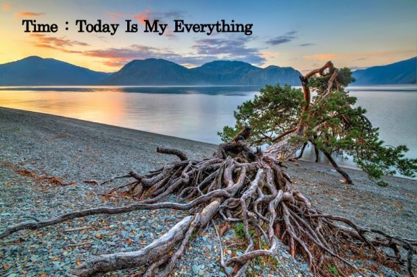 Today is My Everything
