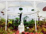 15 Things to do in Glasgow Scotland - Glasgow Botanic Gardens