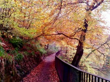 15 things to do in Glasgow Scotland - Kelvin WalkWay